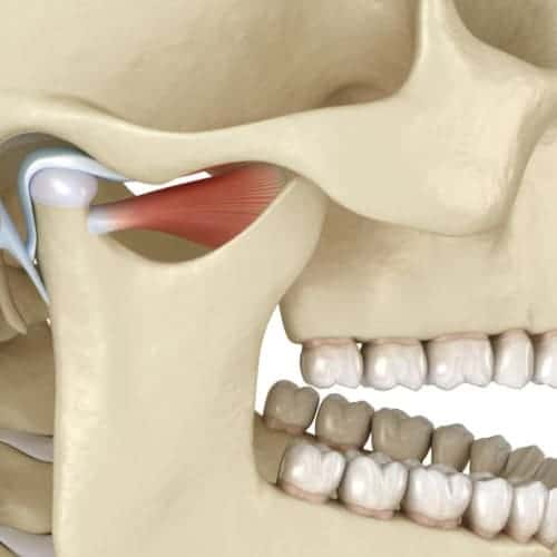 atm articulation temporo mandibulaire chirurgie du visage paris chirurgien maxillo facial paris dr charles mathieu bandini paris 17
