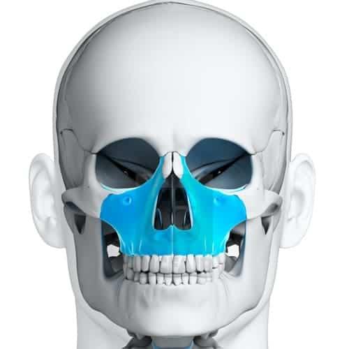 disjonction intermaxillaire chirurgie du visage paris chirurgien maxillo facial paris dr charles mathieu bandini paris 17
